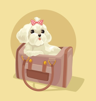 레이디 가방에 앉아 작은 개 캐릭터