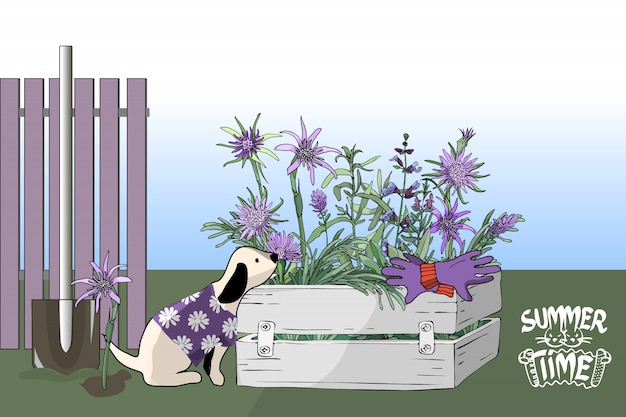 A small dog in purple t-shirt with white flowers, garden flowers in a box.