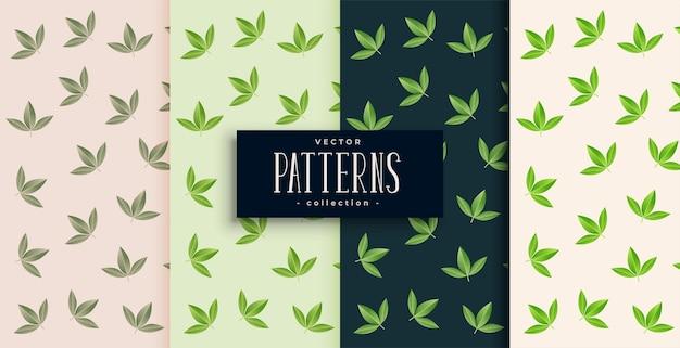 4つの小さな緑の葉のパターンセット