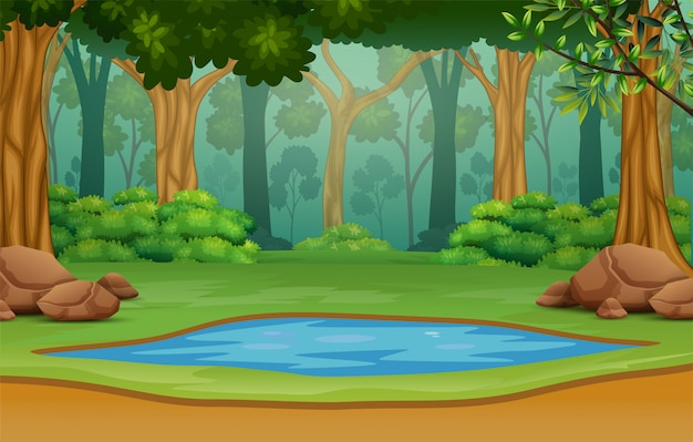 Small pond in the middle of the forest