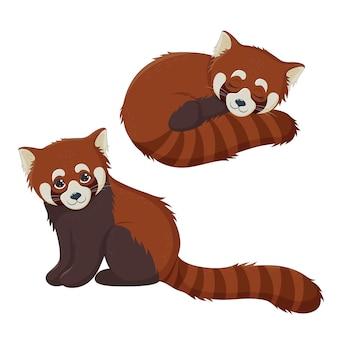 小さな赤いパンダパンダ、中国の動物。かわいいレッサーパンダ、座って寝ています。ベクターイラストeps10。