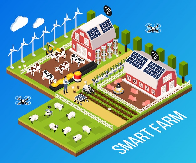 Smart farm concept with technology and cattle, isometric vector illustration