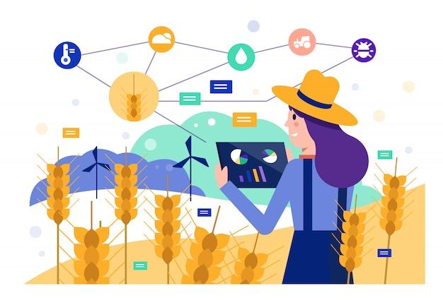 보리 쌀 필드를 모니터링하기 위해 태블릿을 사용하는 스마트 농부.