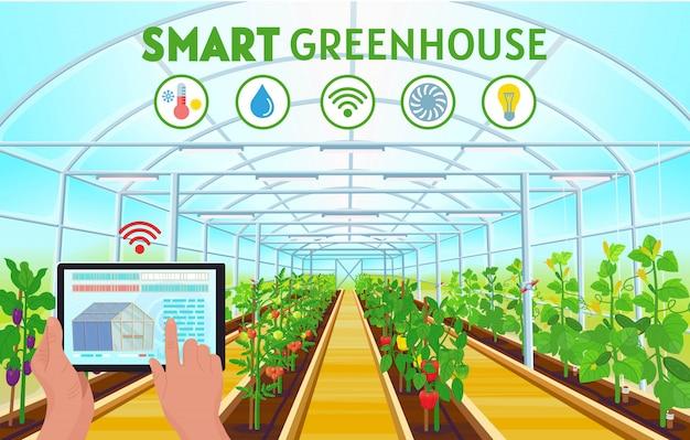 スマート農業。タブレットを使用して温度、湿度、光を制御する農家の手。ピーマン、トマト、キュウリ、ナスが並ぶ大きな温室。図。