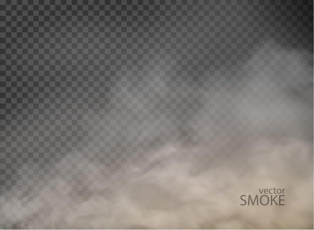 투명 한 배경에 고립 된 안개 불꽃 연기