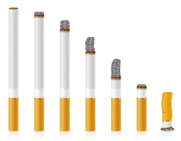 Smoldering cigarettes of different lengths on white