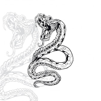 Snake furious vector illustration