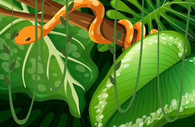 ジャングルに隠されたヘビ