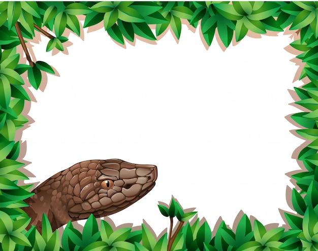 Snake on nature border