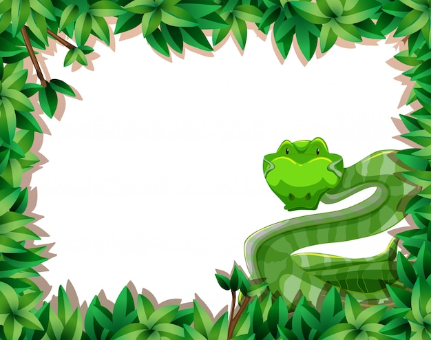 A snake in nature frame