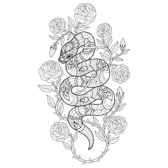 Snake and rose. hand drawn sketch illustration for adult coloring book