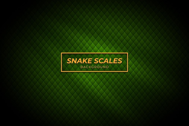 녹색 색상으로 뱀 비늘 배경