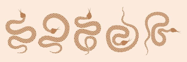 神秘的な魔法のオブジェクトのヘビのセット月の目の星座太陽と星の精神的なオカルトのロゴ