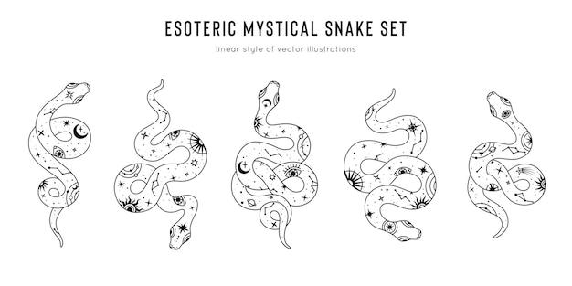 月、目、星座、太陽、星などの神秘的な魔法のオブジェクトのヘビのセット。精神的なオカルトのシンボル、難解なオブジェクト。