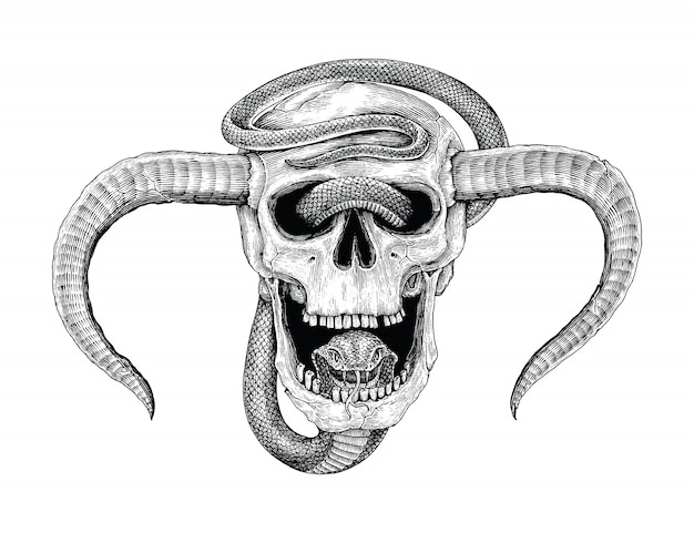 Змея с человеческим черепом рука рисунок старинные гравюры иллюстрации