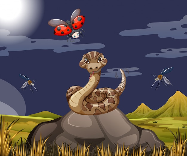 Snake with ladybug in forest scene at night