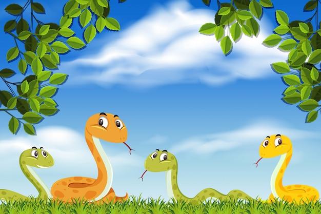 Snakes in nature scene