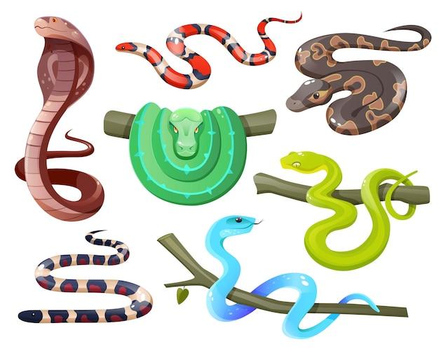 Змеи дикие тропические змеи, изолированные на белом фоне