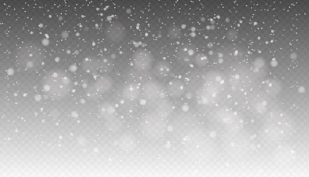 Snowfall, seamless realistic falling snow, snowflakes in different shapes and forms, winter weather.