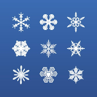 雪片冬セット