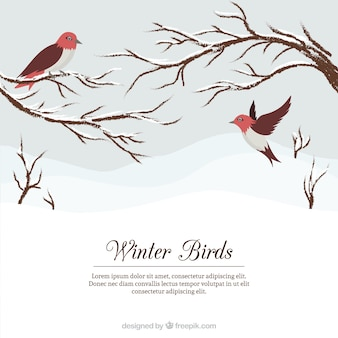 Snowy landscape background with pretty birds and branches