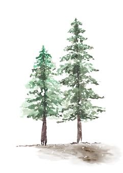 눈 덮인 겨울 커플 소나무 손으로 그린 수채화. 녹색 자연 숲 소나무 크리스마스 트리의 계절 벡터 장식 겨울.