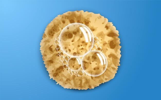 Soap bubble on sponge