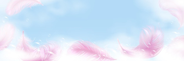 Soap foam with bubbles and pink feathers banner.