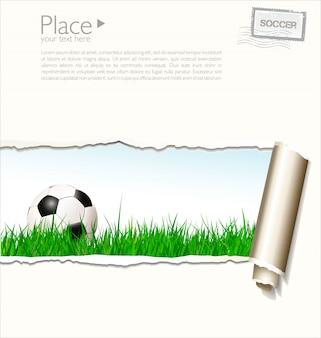 Soccer background illustration