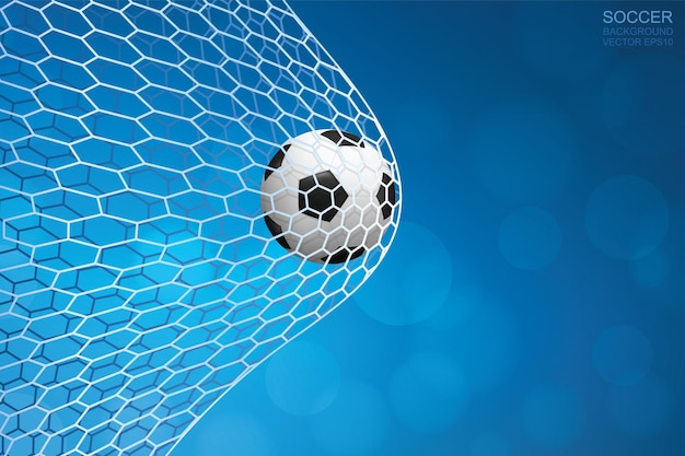 Soccer ball in goal. football ball and white net with blue background. vector illustration.