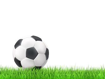 Soccer ball grass background