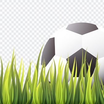 Soccer ball on green grass isolate background