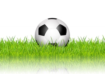 Soccer ball in grass on white background