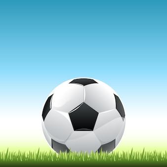 축구 공과 잔디