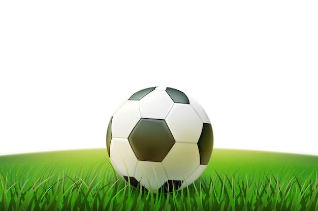 Футбольный мяч на поле травы стадиона 3d иллюстрация