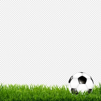 Soccer ball with grass border transparent background with gradient mesh,  illustration