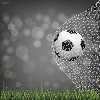 Soccer football ball in goal.