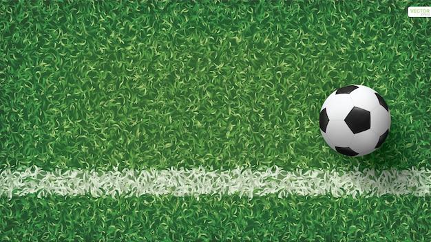 Soccer football ball on green grass field.