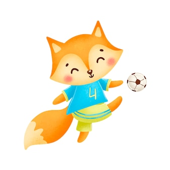 Soccer fox isolated on white  . soccer animals.