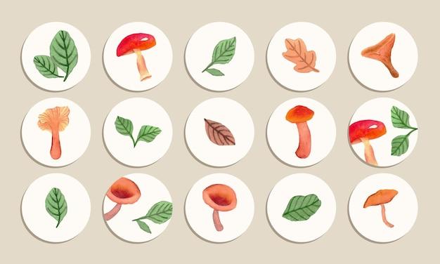 手描きの水彩キノコと葉のイラストでソーシャルメディアのハイライトカバー