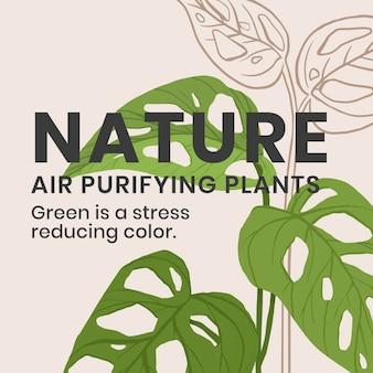 自然テキストとソーシャルメディア植物テンプレートベクトル
