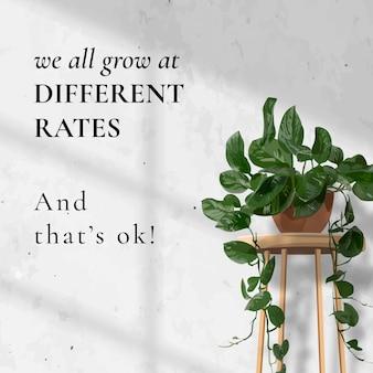 ソーシャルメディア投稿テンプレートベクトル、緑の葉の植物