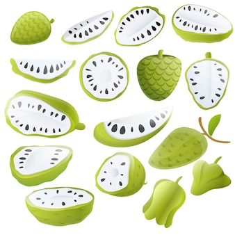 Soursop set, cartoon style