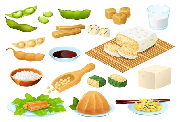 Soy food set  on white, vegetarian protein meal, healthy diet collection,  illustration