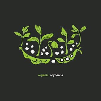 大豆のシンボル緑の植物のさやもやしの葉ナチュラルビーガンデザインアートグリーンイラスト