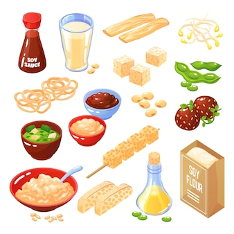 Soya products isolated icons set of cheese meatballs noodle flour milk oil sauce Free Vector