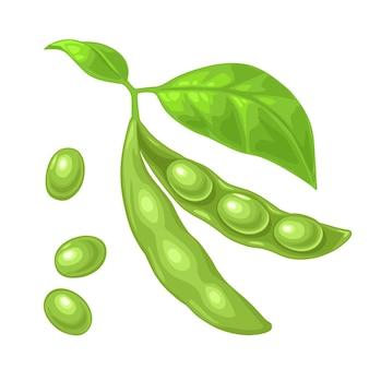 大豆のさやは、葉や種で開閉します。メニュー、ポスター、ラベルのベクトル色フラットアイコン。白い背景で隔離