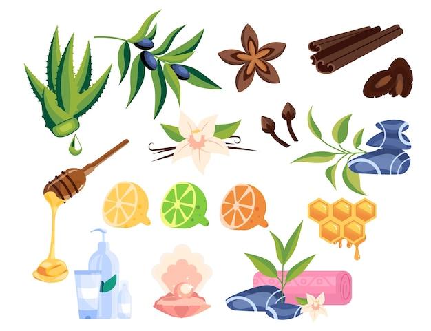 스파 뷰티 서비스 아이템 세트. 살롱 미용 치료 물건. 유기농 피부 요법, 허브 및 오일 아로마 테라피. 미용실 요소.