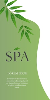 Spa lettering with hanging twigs. creative green and white background with realistic leaves