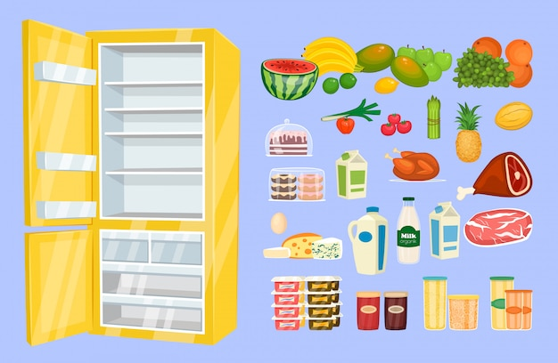 Space organization in freezer flat design concept